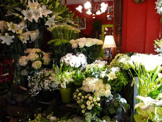 Fleuriste sorgues vaucluse sud arom 39 nature assurance for Trouver un fleuriste